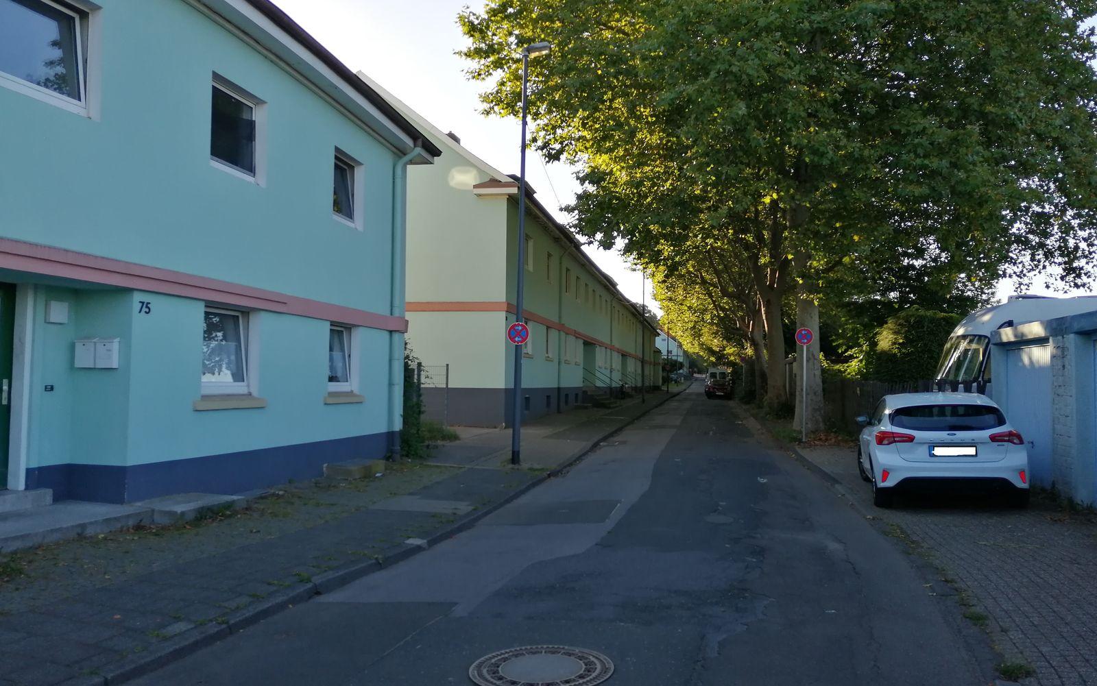 Sachstand Parksituation, Straßenzustand und Baumscheibensicherung im Bereich Neuenhof